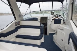 clean mildew and mold from boat seats